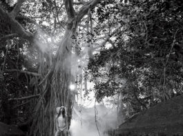 Venice-Magazine-Summer-2015-Issue-Into-The-Wild-Hugh-Taylor-Birch-State-Park-George-Kamper-Danny-Santiago-Yara-Khmidan-Wilhelmina-NY-American-Apparel-Red-Carter