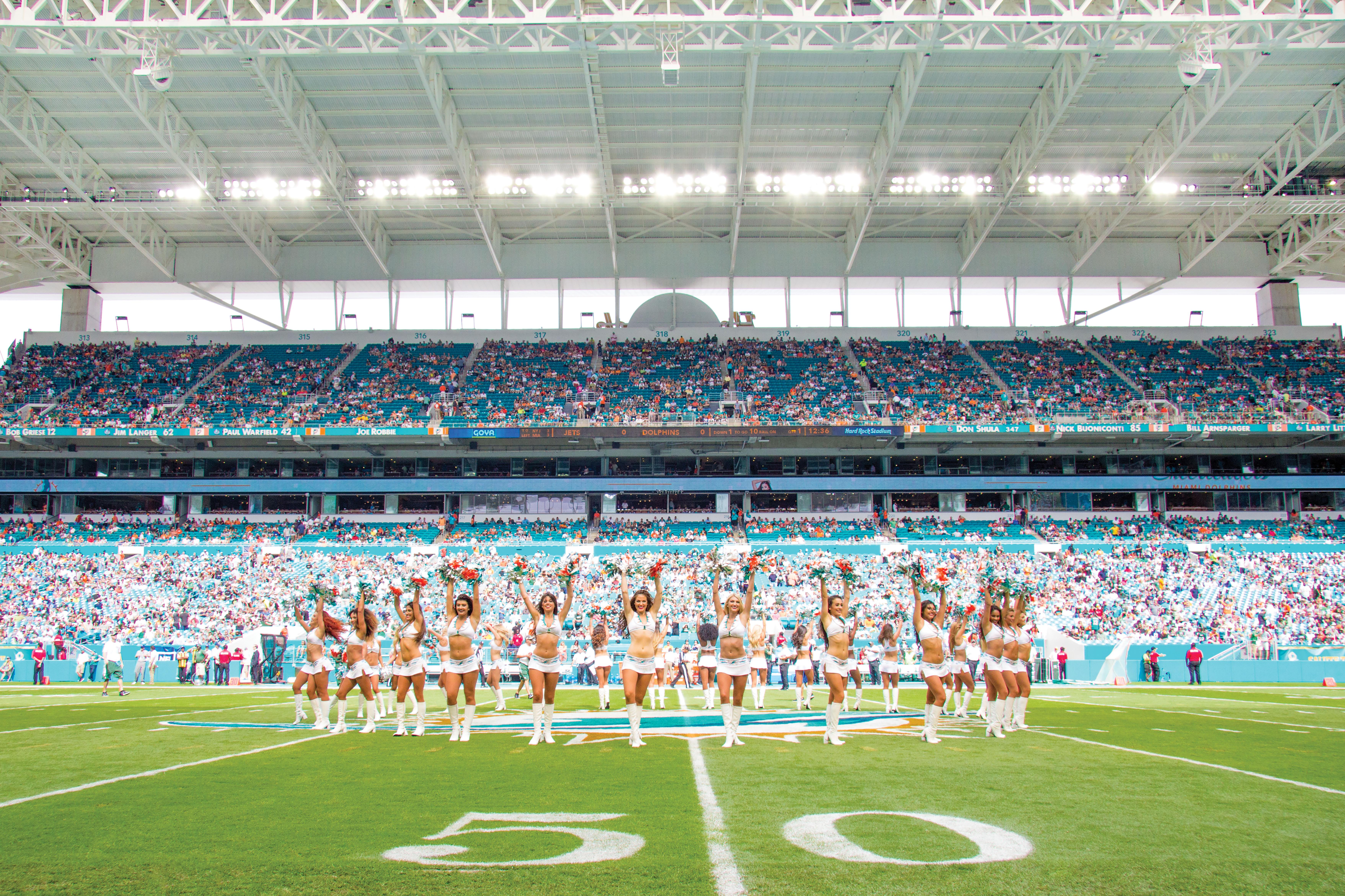 Dolphins-Miami-Fort-Lauderdale-Venice-Magazine-5