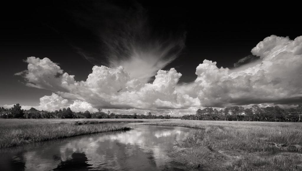 Clyde-Butcher-venice-magazine-Dennis-creek-fort-lauderdale-Florida-photography-winter-nila-do-simon-carlos-suarez