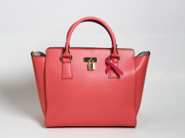 Venice-Magazine-Fall-2014-Issue-City-Cool-Bag-It-Angela-Roi-Breast-Cancer-Awareness