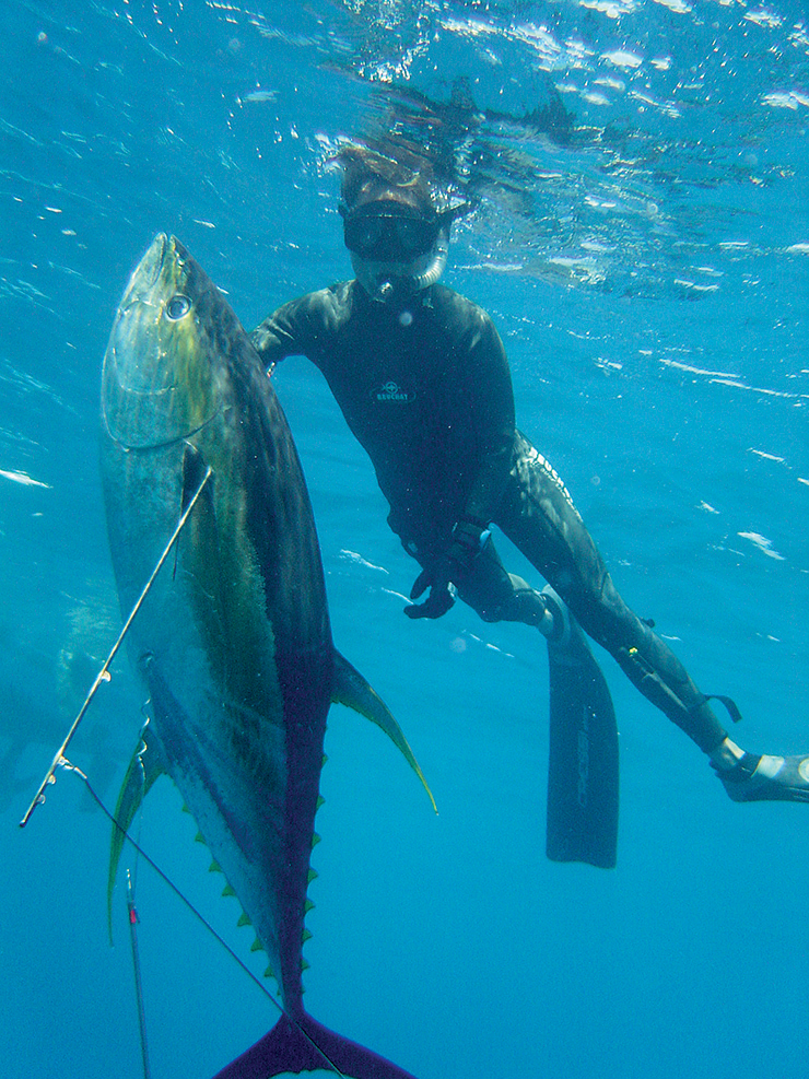 Sheri Daye has several spearfishing titles to her name, including being the current women's world-record holder for Pacific cubera snapper, and holding titles for bull dolphin and yellowfin tuna.