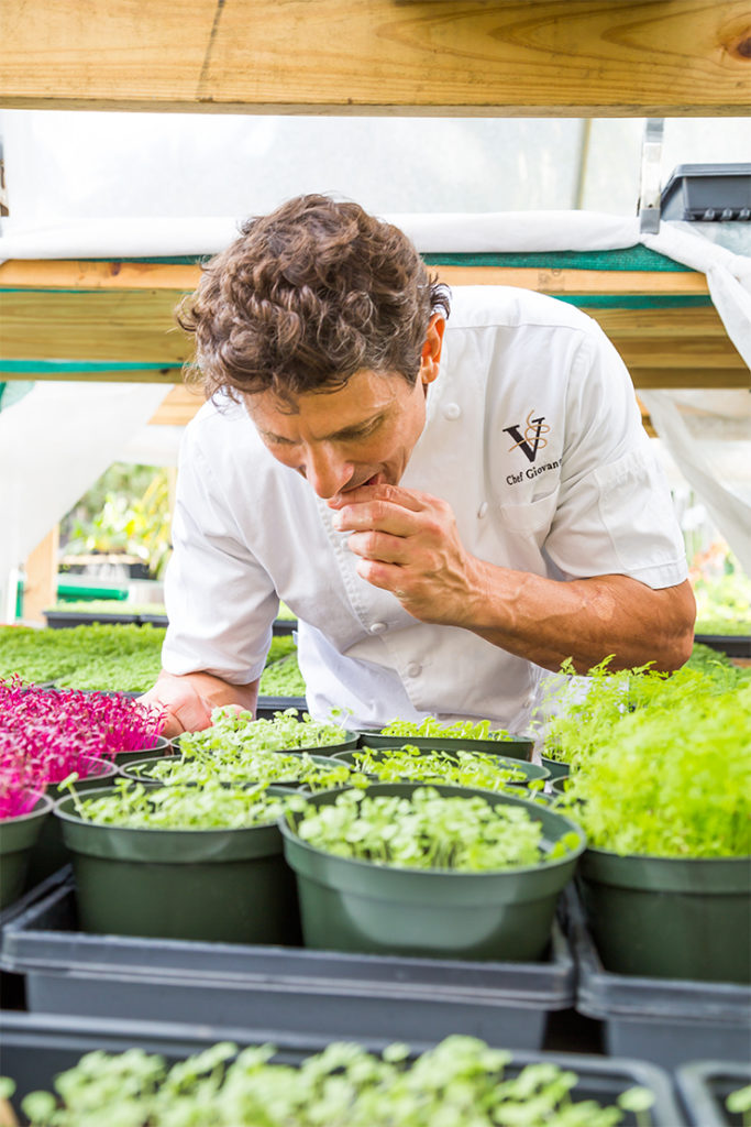Taste of the Nation Rocchio makes frequent visits to the local farms from where he pulls ingredients to use in his restaurant.