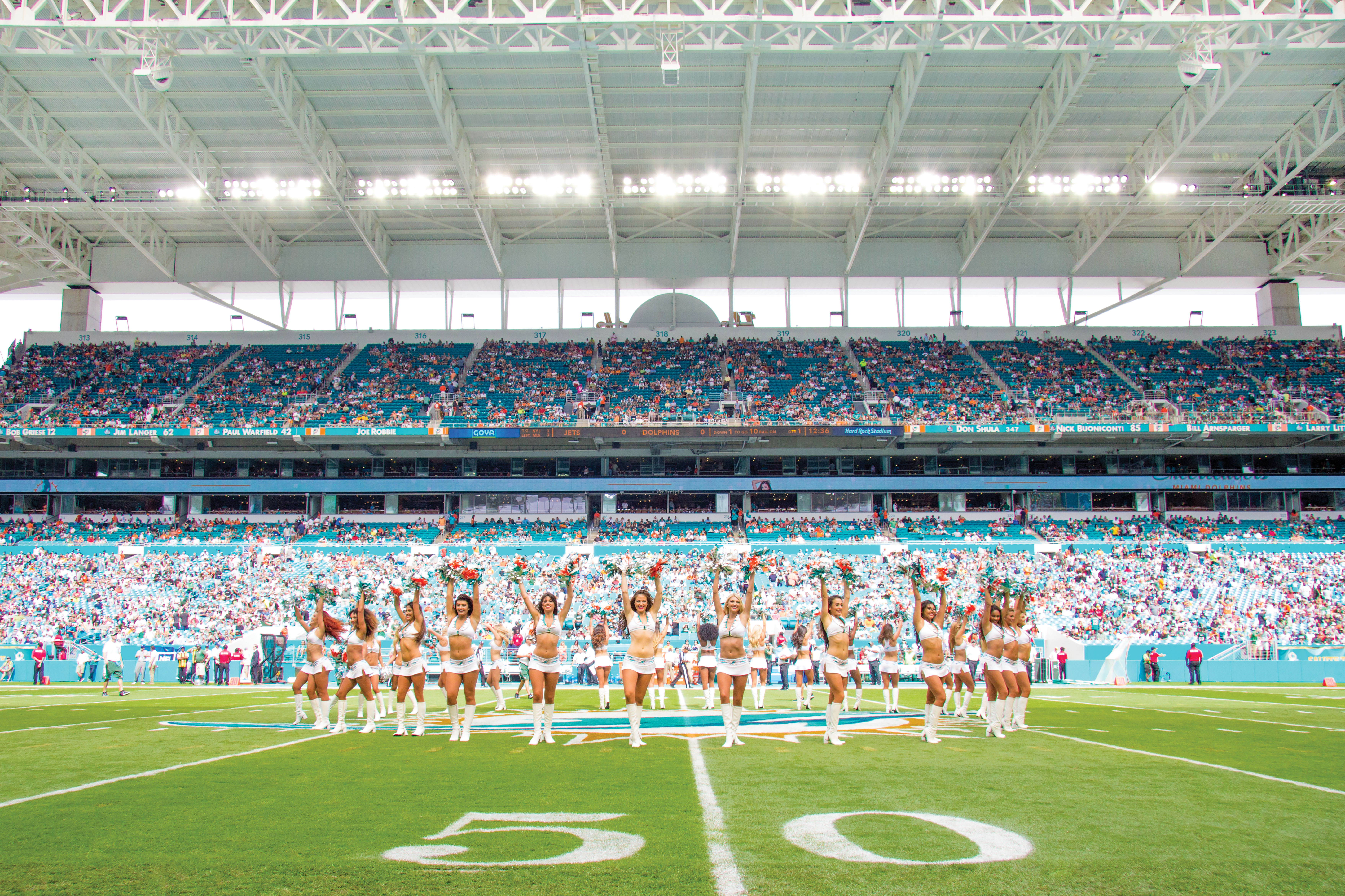 Dolphins-Miami-Fort-Lauderdale-Venice-Magazine-5