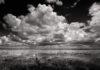 Clyde-Butcher-venice-magazine-lake-myaka-fort-lauderdale-Florida-photography-winter-nila-do-simon-carlos-suarez