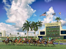 pegasus-world-cup-2019-horse-racing-turf-trophy-thoroughbread-celebrities-ludacris-hallandale-beach-courtney-cox-venice-magazine-fort-lauderdale